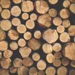 Solid Wood Vs Medium Density Fiberboard MDF